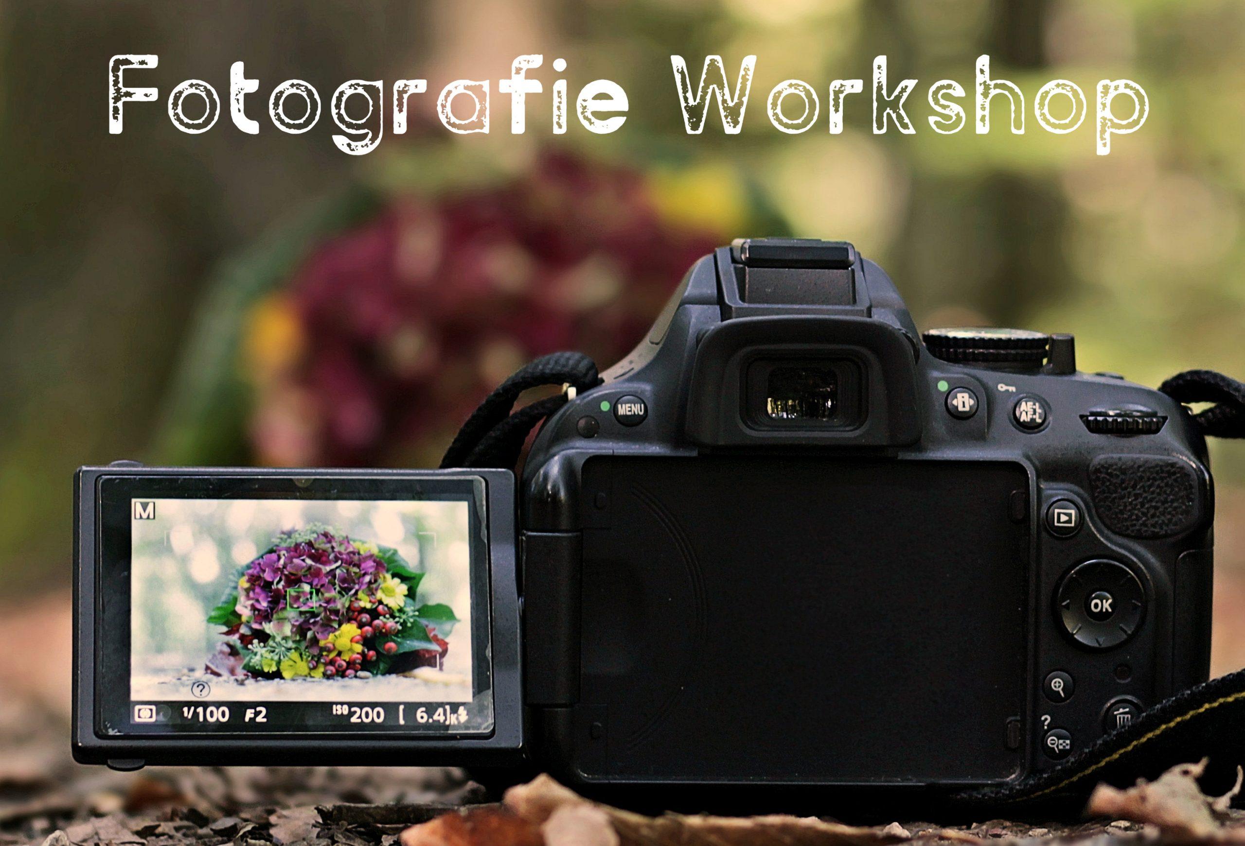 Fotografieren für Floristen